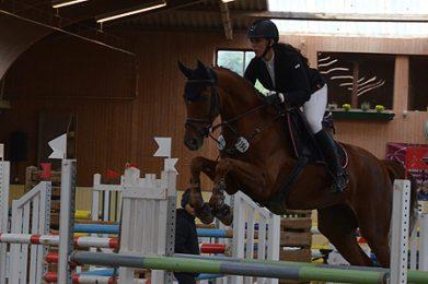 ub sf pferde01